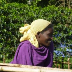 Woman in purple shirt at Ethiopia Coffee Farm